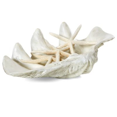 Atlantis Clam Shell - Large