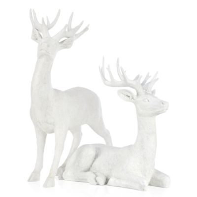 Majestic Deer - 22H & 32H