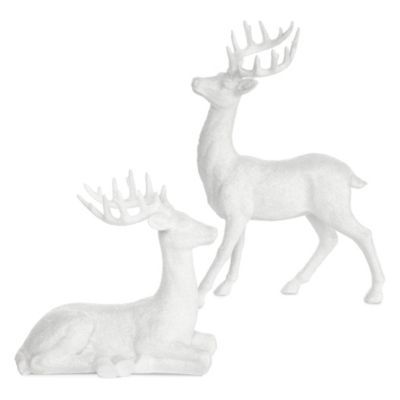 Majestic Deer - 8H & 14H
