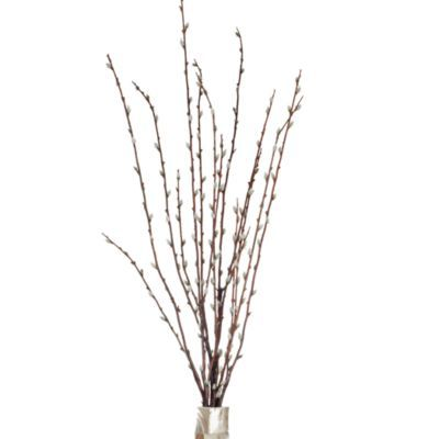 Faux Pussy Willow Spray - Set of 6