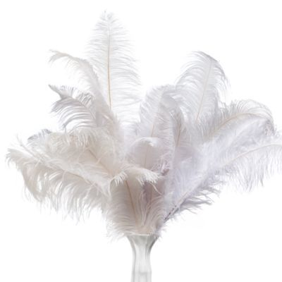 Ostrich Spray - Set of 3