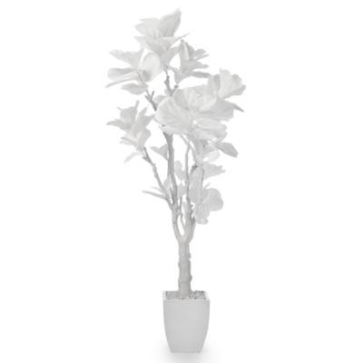 White Fiddle Leaf Tree