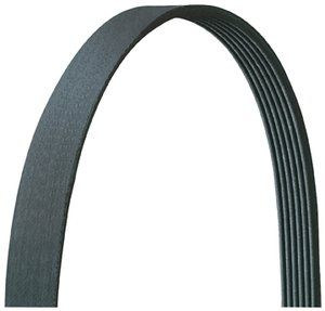 Drive Rite V-Ribbed Belt