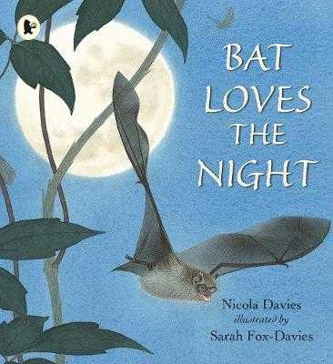 Bat Loves the Night - Davies, Nicola
