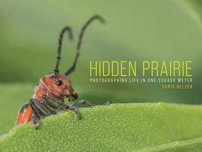 Hidden Prairie: Photographing Life in One Square Meter - Helzer, Chris