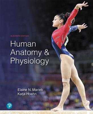 Human Anatomy & Physiology - Marieb, Elaine, and Hoehn, Katja