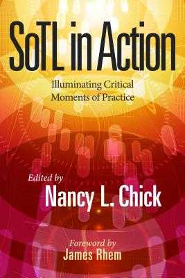 Sotl in Action: Illuminating Critical Moments of Practice - Chick, Nancy L (Editor), and Rhem, James (Foreword by)