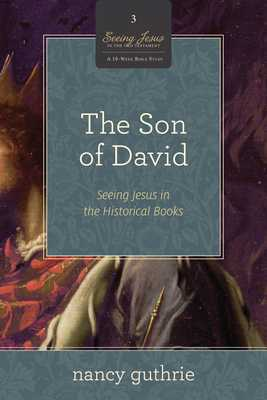 The Son of David: Seeing Jesus in the Historical Books (a 10-Week Study) - Guthrie, Nancy
