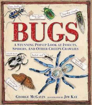 Bugs: A Stunning Pop-Up Look at Insects, Spiders, and Other Creepy-Crawlies - McGavin, George, Dr.
