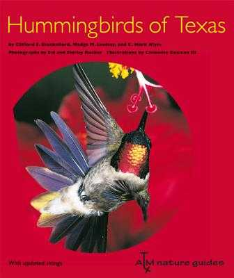 Hummingbirds of Texas: With Their New Mexico and Arizona Ranges - Shackelford, Clifford E, and Lindsay, Madge M, and Klym, C Mark