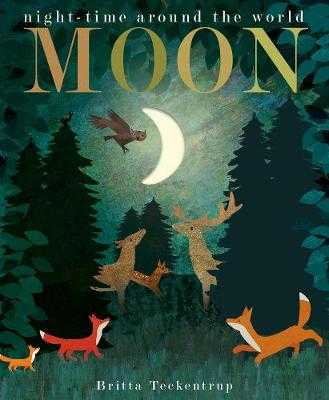 Moon: night-time around the world - Hegarty, Patricia, and Teckentrup, Britta