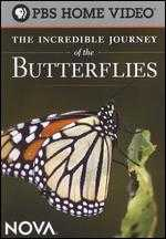 NOVA: The Incredible Journey of the Butterflies - Nick DePencier