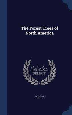 The Forest Trees of North America - Gray, Asa