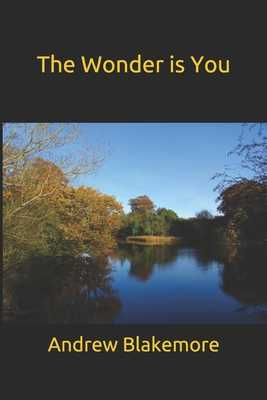 The Wonder is You - Blakemore, Andrew John