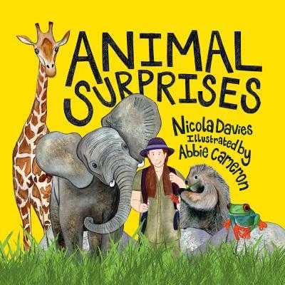 Animal Surprises - Davies, Nicola
