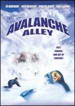 Avalanche Alley - Paul Ziller