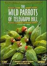 The Wild Parrots of Telegraph Hill [2 Discs] [Collector's Edition] - Judy Irving