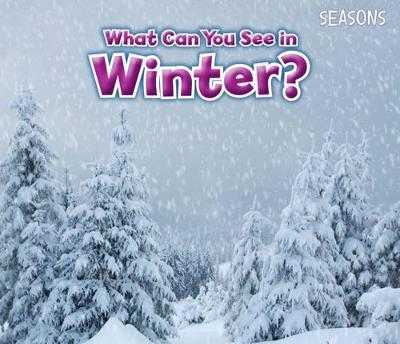 What Can You See In Winter? - Smith, Sian
