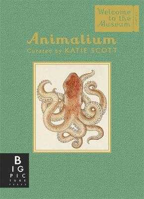 Animalium (Mini Gift Edition) - Broom, Jenny