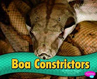 Boa Constrictors - Higgins, Melissa, and Saunders-Smith, Gail (Consultant editor)