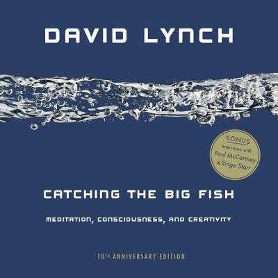Catching the Big Fish: Meditation, Consciousness, and Creativity - Lynch, David