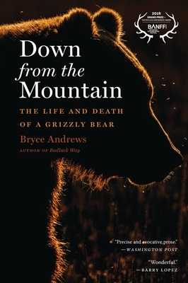Down from the Mountain: The Life and Death of a Grizzly Bear - Andrews, Bryce
