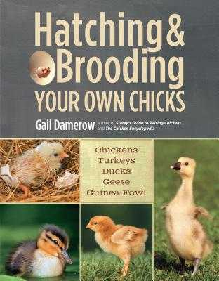 Hatching & Brooding Your Own Chicks: Chickens, Turkeys, Ducks, Geese, Guinea Fowl - Damerow, Gail