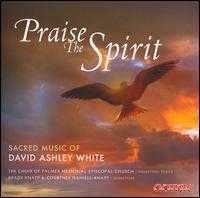 Praise the Spirit: Sacred Music of David Ashley White - Alan Austin (violin); Ann Frohbieter (organ); Brady Knapp (baritone); Brian Vogel (percussion);...