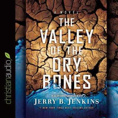 The Valley of the Dry Bones: An End Times Novel - Jenkins, Jerry B, and Heath, David Cochran, Mr. (Narrator)