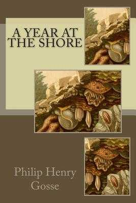 A Year at the Shore - Gosse, Philip Henry