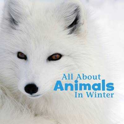 All About Animals in Winter - Rustad, Martha E. H.