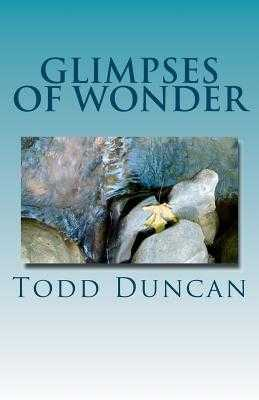 Glimpses of Wonder - Duncan, Todd