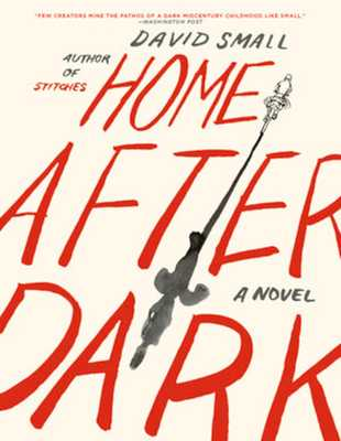 Home After Dark - Small, David