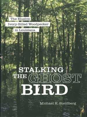 Stalking the Ghost Bird: The Elusive Ivory-Billed Woodpecker in Louisiana - Steinberg, Michael K