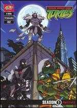 Teenage Mutant Ninja Turtles: Season 1 - Part 2 of 2 [2 Discs]